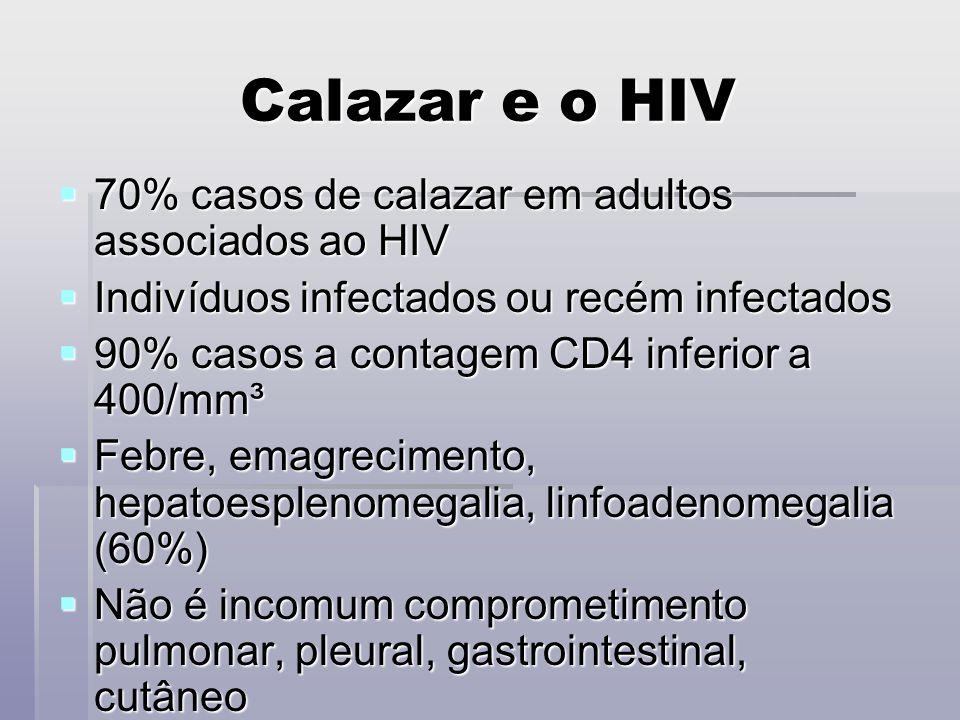 Calazar e o HIV 70% casos de calazar em adultos associados ao HIV