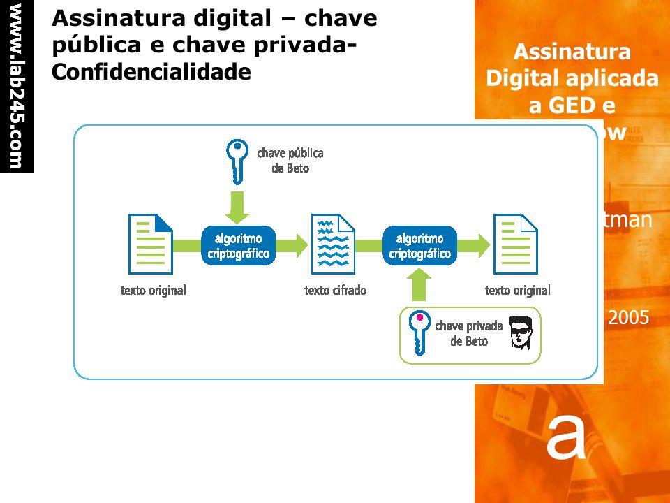 Assinatura digital – chave pública e chave privada- Confidencialidade