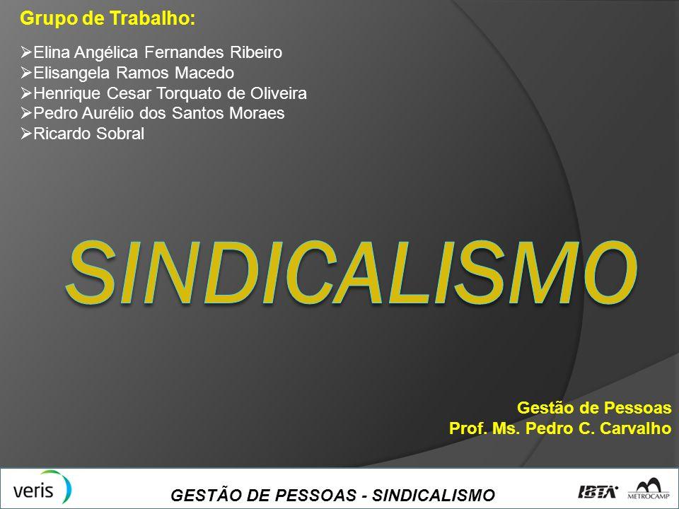 SINDICALISMO Grupo de Trabalho: Elina Angélica Fernandes Ribeiro