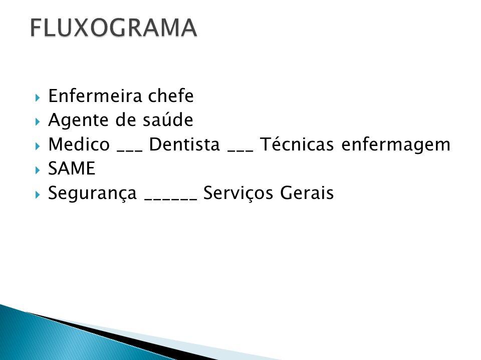 FLUXOGRAMA Enfermeira chefe Agente de saúde