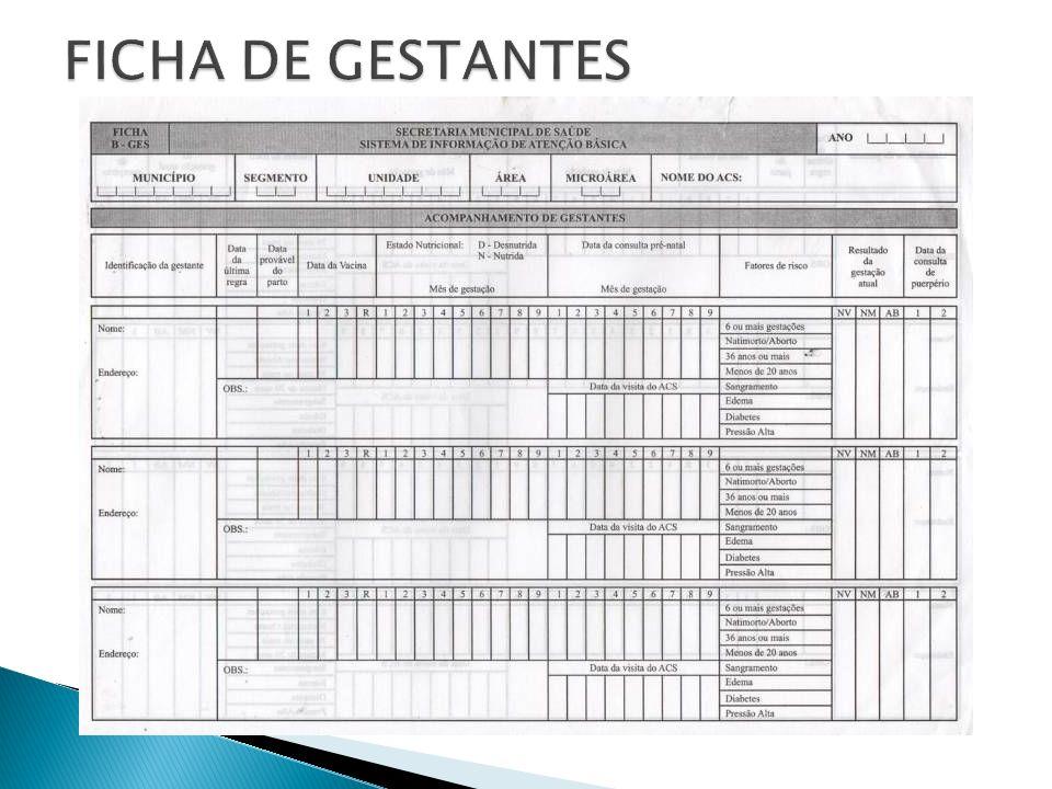 FICHA DE GESTANTES