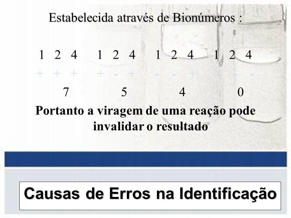 Causas de Erros na Identificação