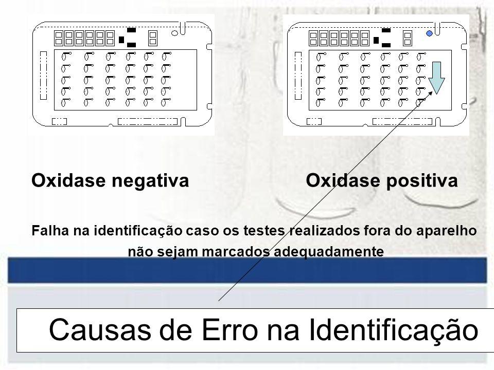 Causas de Erro na Identificação