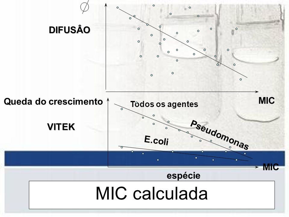 MIC calculada DIFUSÂO MIC Queda do crescimento VITEK Pseudomonas