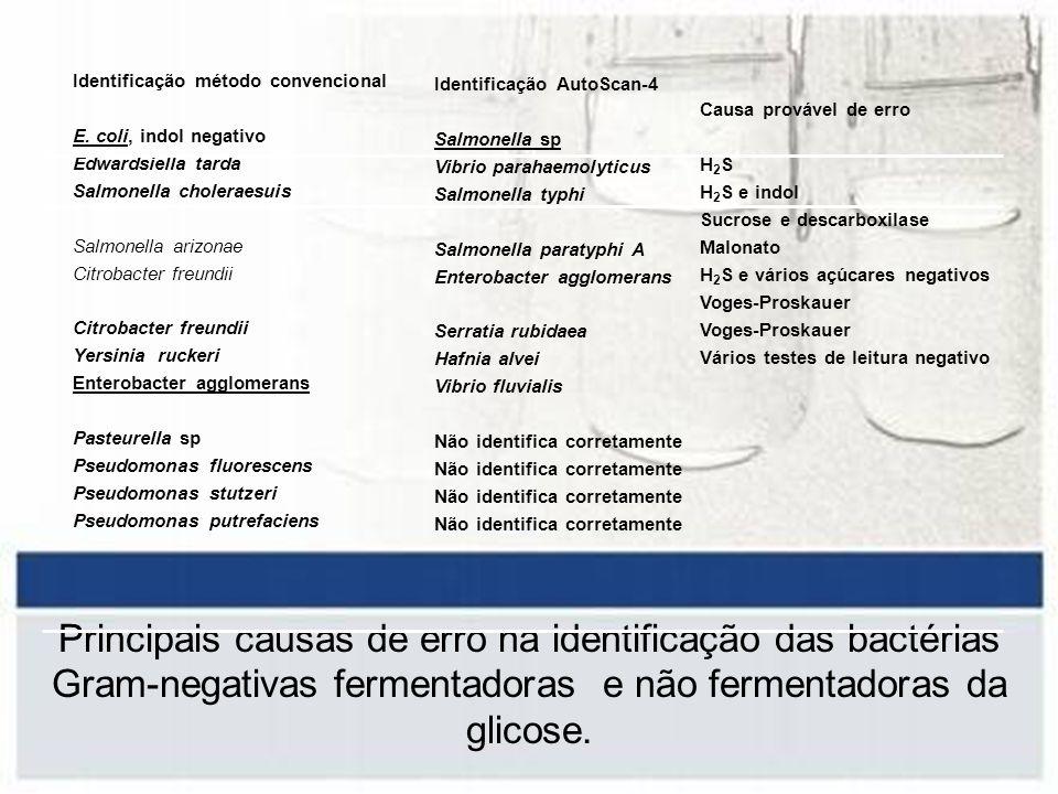 Identificação AutoScan-4