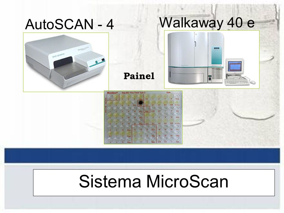 AutoSCAN - 4 Walkaway 40 e 96 Painel Sistema MicroScan