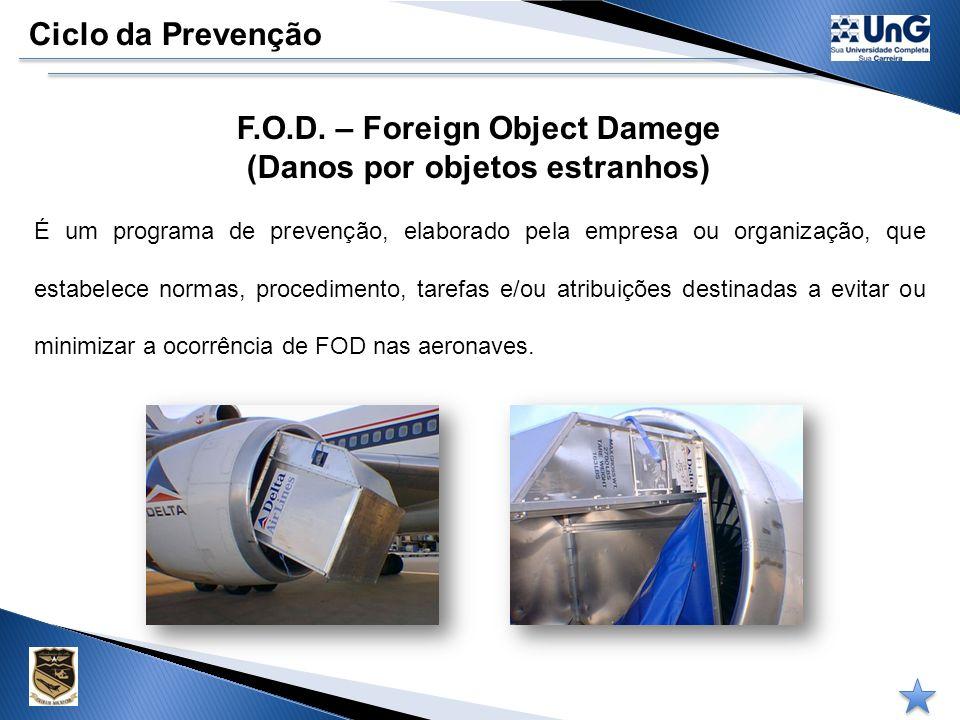 F.O.D. – Foreign Object Damege (Danos por objetos estranhos)