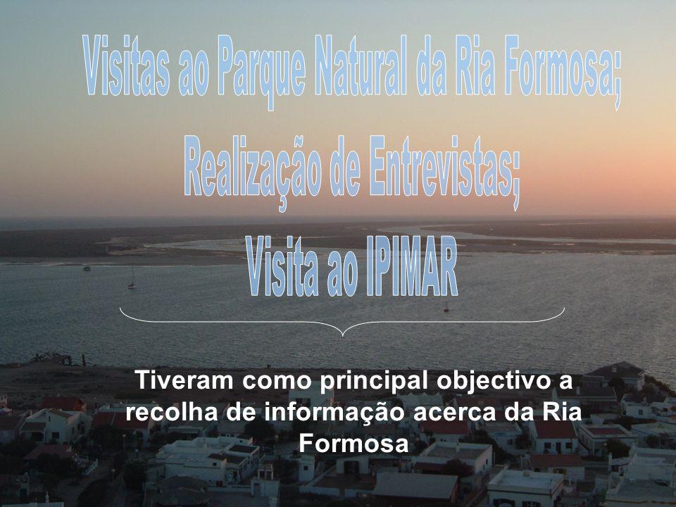 Visitas ao Parque Natural da Ria Formosa; Realização de Entrevistas;