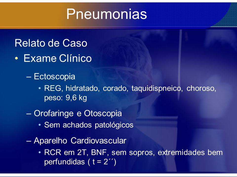 Pneumonias Relato de Caso Exame Clínico Ectoscopia