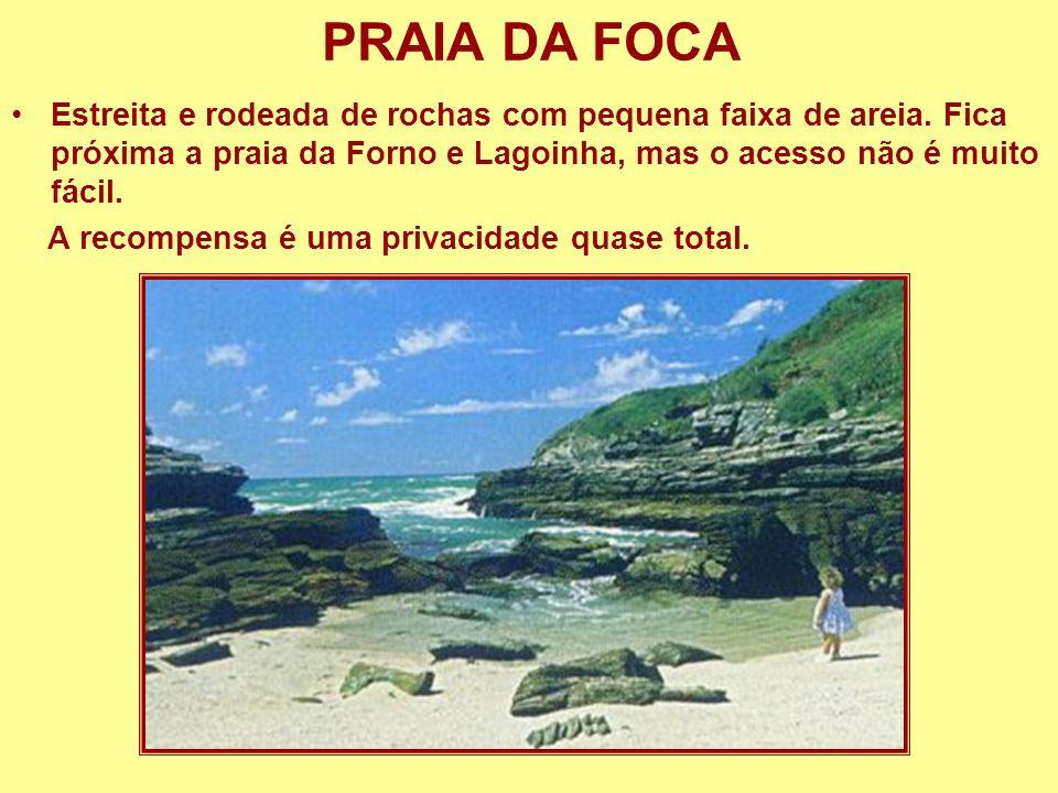PRAIA DA FOCA Estreita e rodeada de rochas com pequena faixa de areia. Fica próxima a praia da Forno e Lagoinha, mas o acesso não é muito fácil.