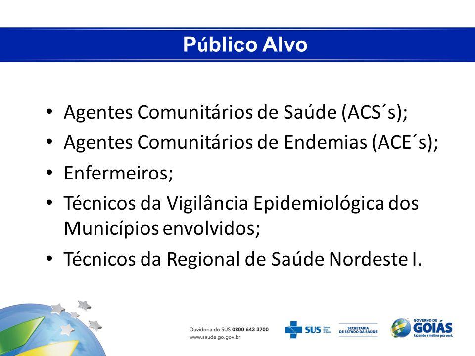 Público Alvo Agentes Comunitários de Saúde (ACS´s); Agentes Comunitários de Endemias (ACE´s); Enfermeiros;