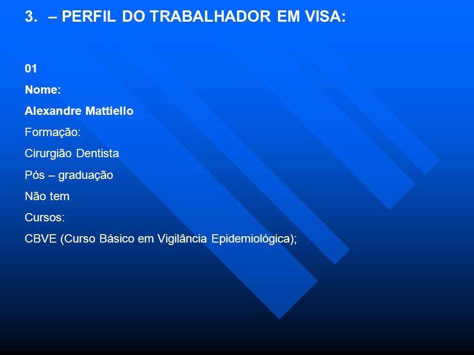 – PERFIL DO TRABALHADOR EM VISA: