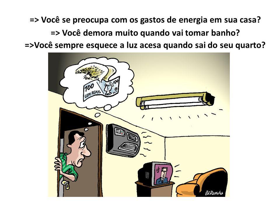 => Você se preocupa com os gastos de energia em sua casa