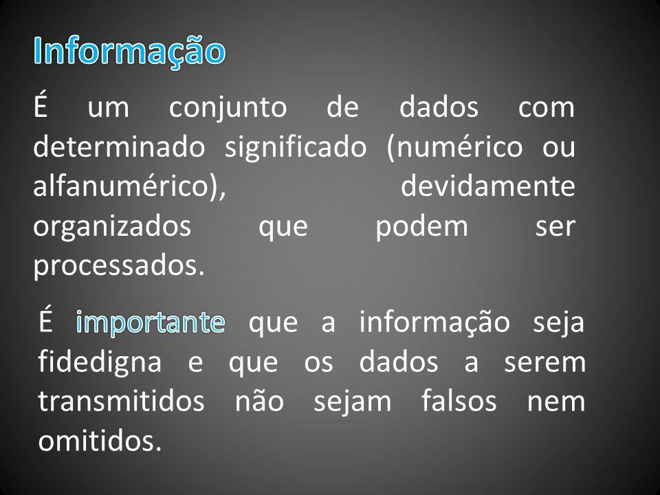 Informação É um conjunto de dados com determinado significado (numérico ou alfanumérico), devidamente organizados que podem ser processados.