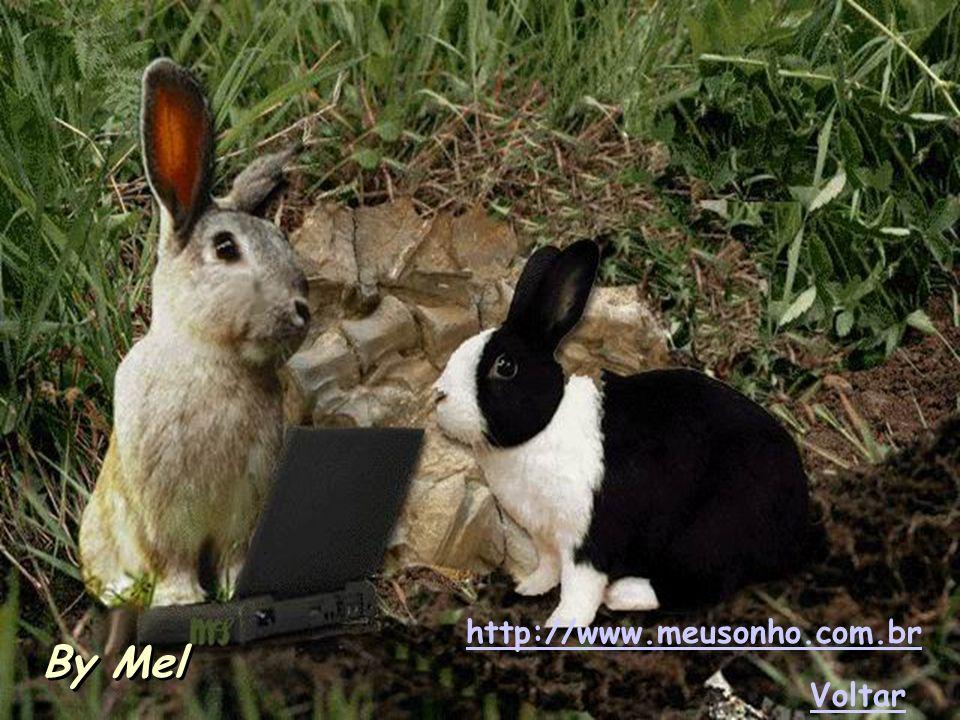 http://www.meusonho.com.br By Mel Voltar