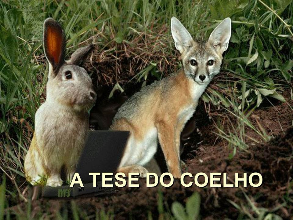 A TESE DO COELHO