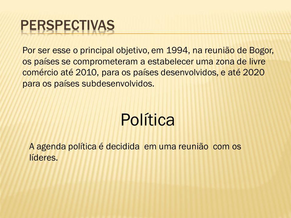Política Perspectivas