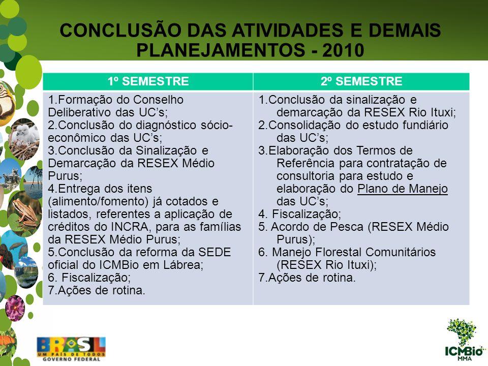 CONCLUSÃO DAS ATIVIDADES E DEMAIS PLANEJAMENTOS - 2010