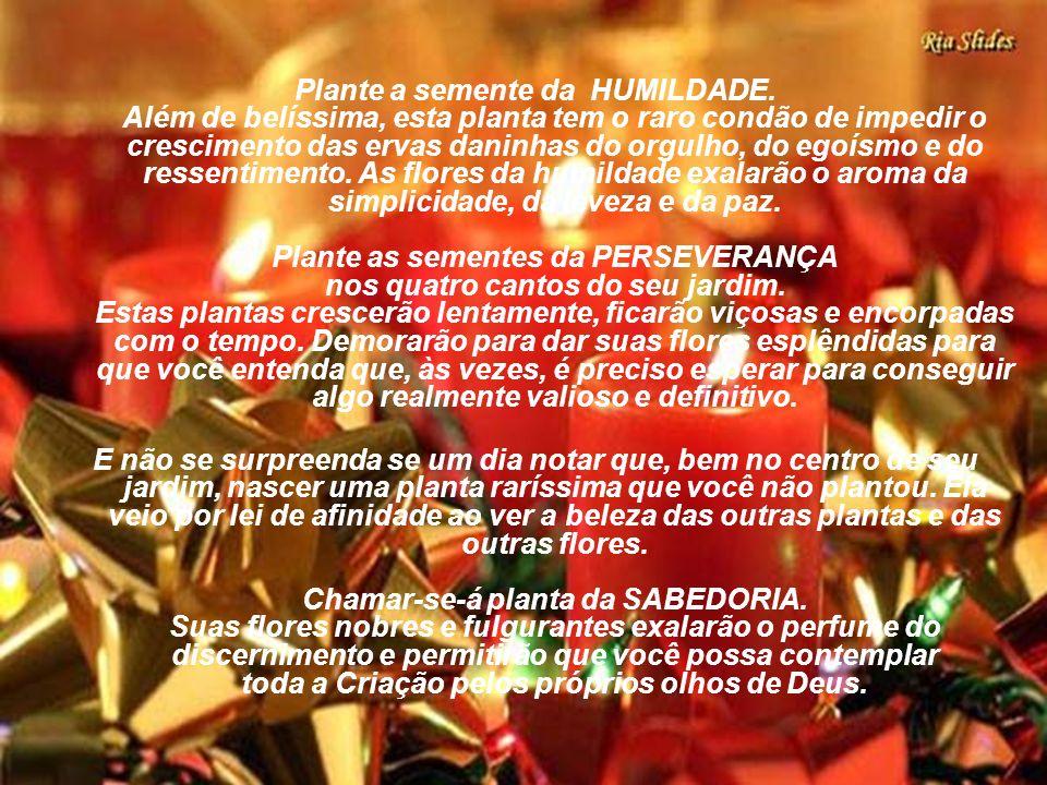 Plante a semente da HUMILDADE