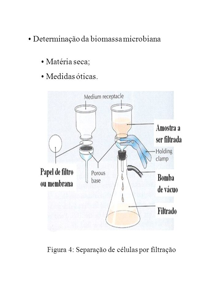 Determinação da biomassa microbiana