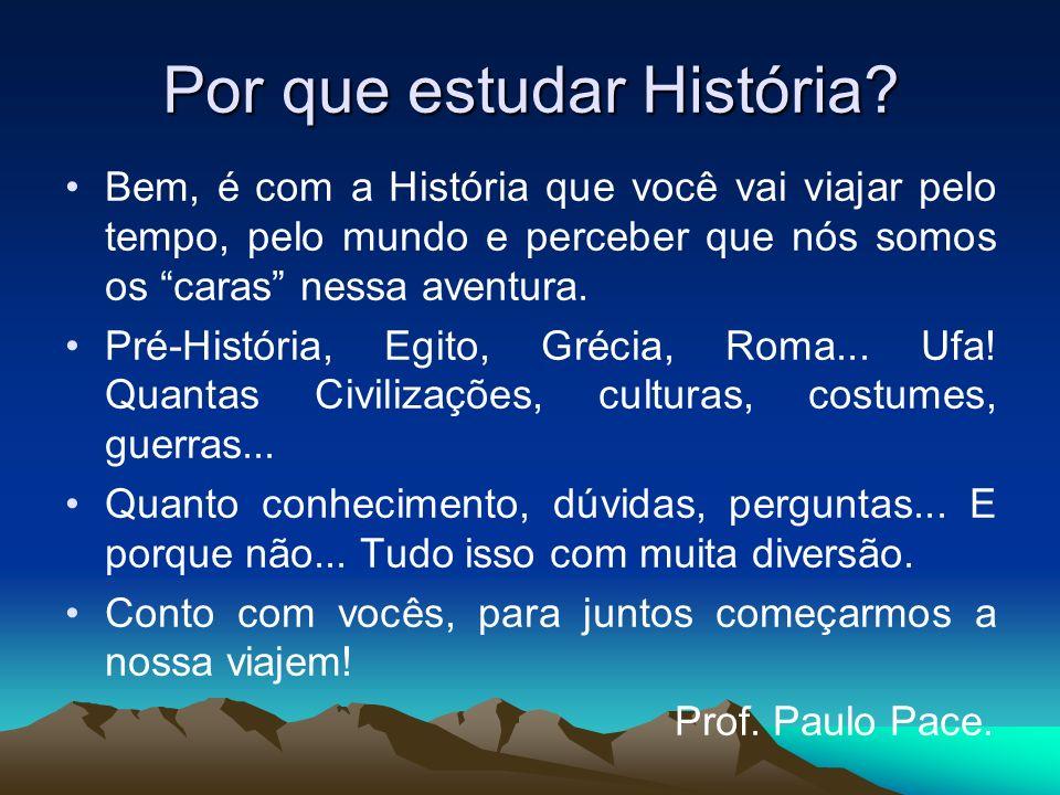 Por que estudar História