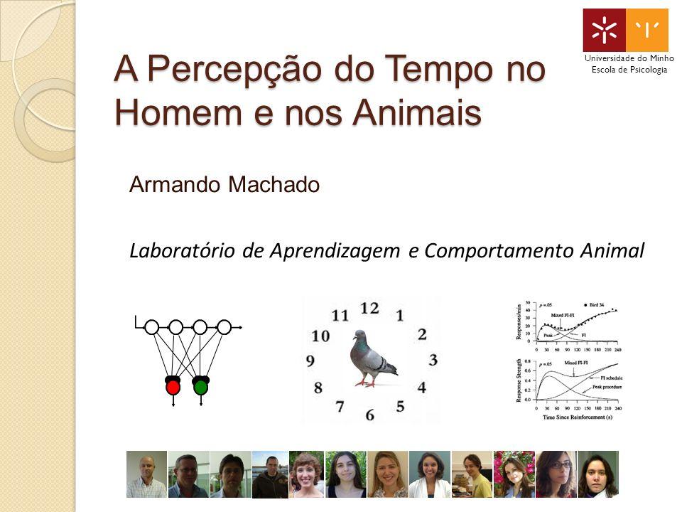 A Percepção do Tempo no Homem e nos Animais