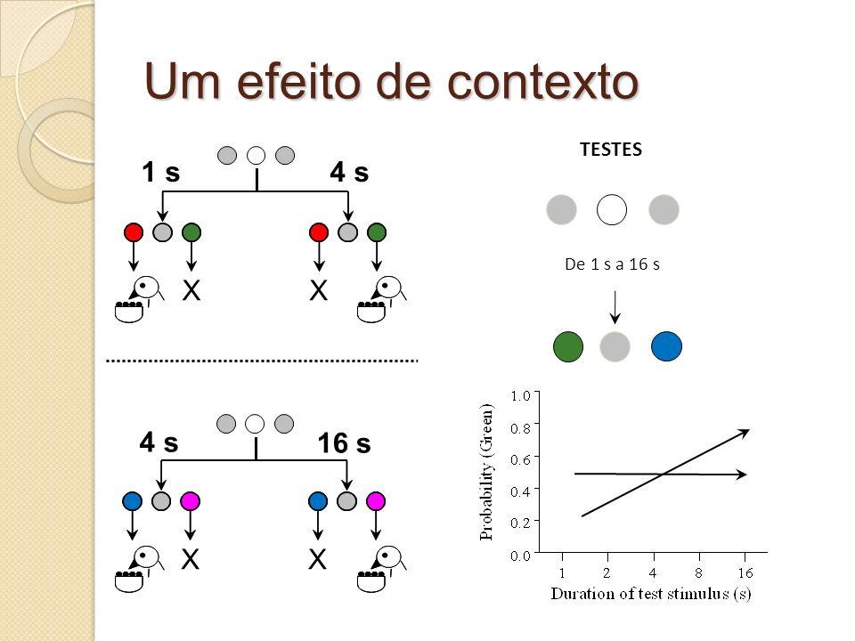Um efeito de contexto TESTES De 1 s a 16 s 4 s X 1 s 4 s 16 s X