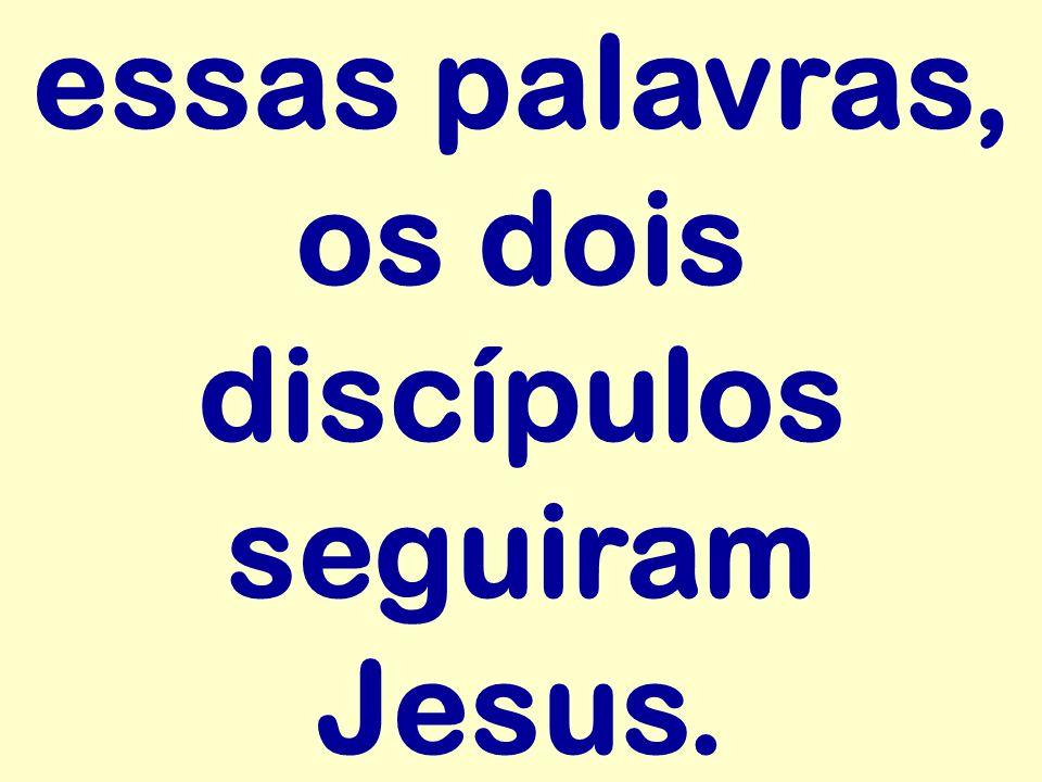 essas palavras, os dois discípulos seguiram Jesus.
