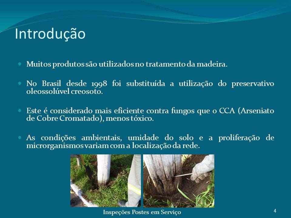 Introdução Muitos produtos são utilizados no tratamento da madeira.