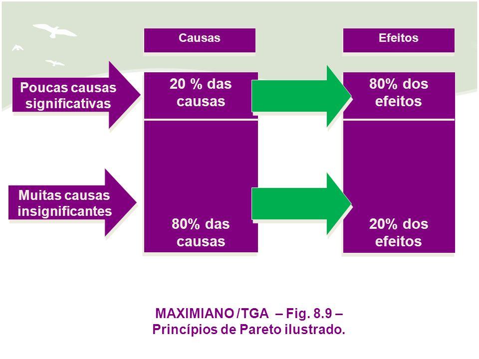 20 % das causas 80% das causas 80% dos efeitos 20% dos efeitos
