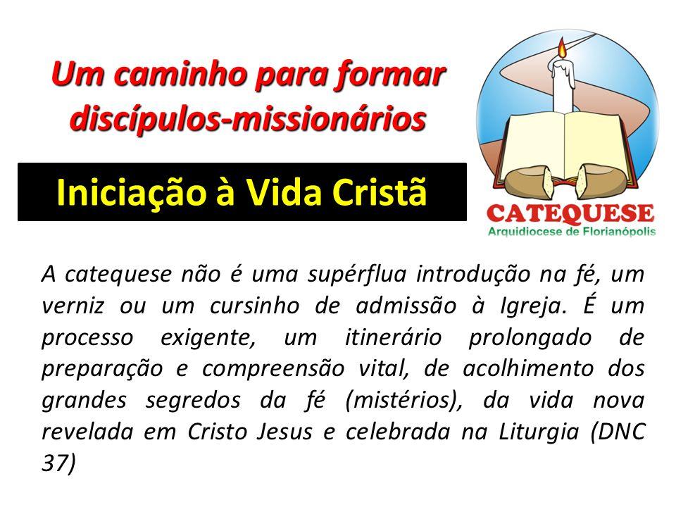 Um caminho para formar discípulos-missionários Iniciação à Vida Cristã