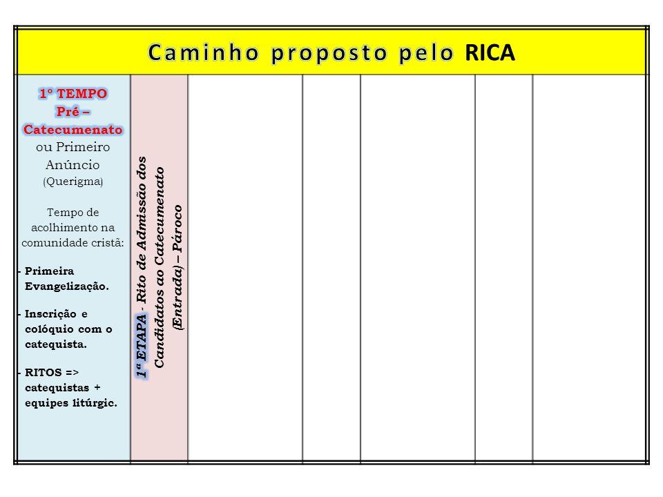 Caminho proposto pelo RICA