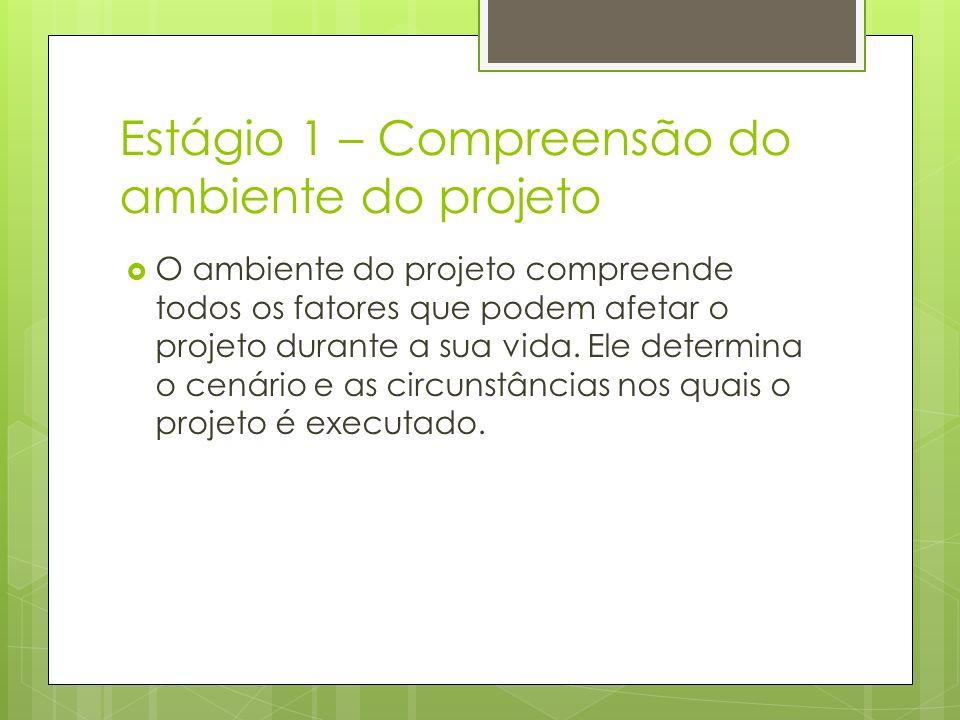 Estágio 1 – Compreensão do ambiente do projeto