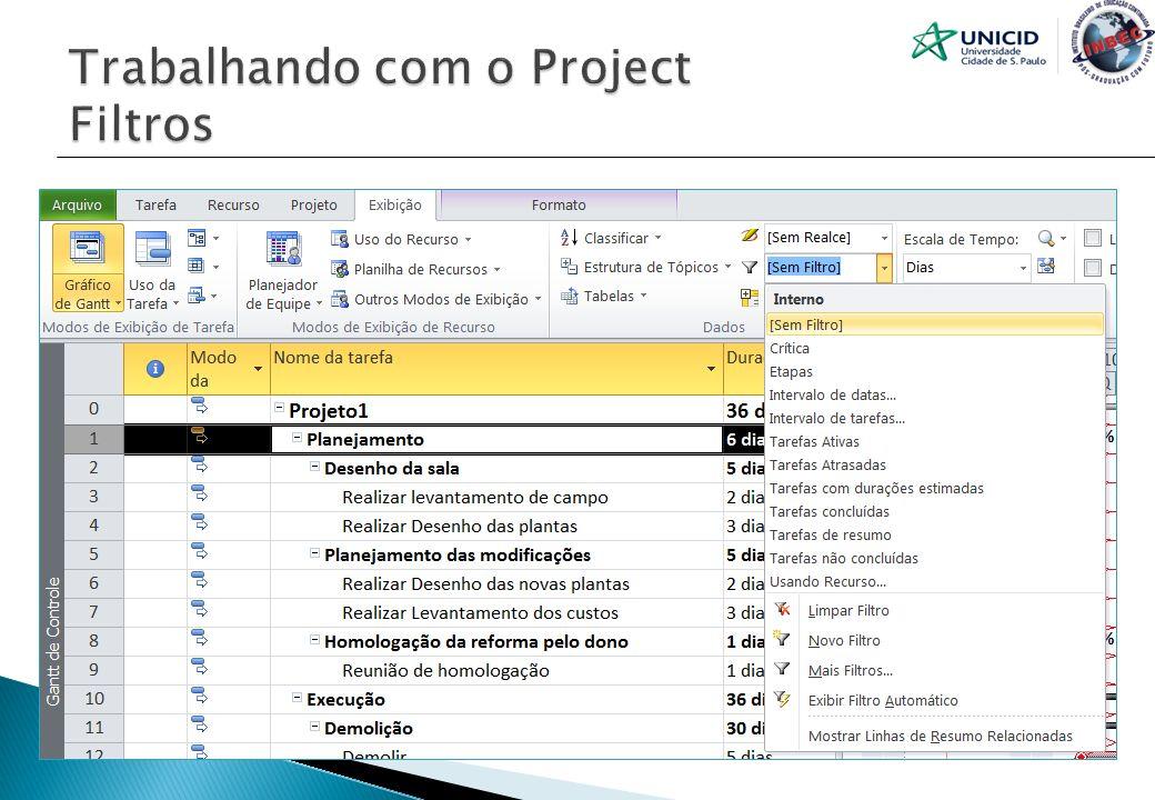 Trabalhando com o Project Filtros