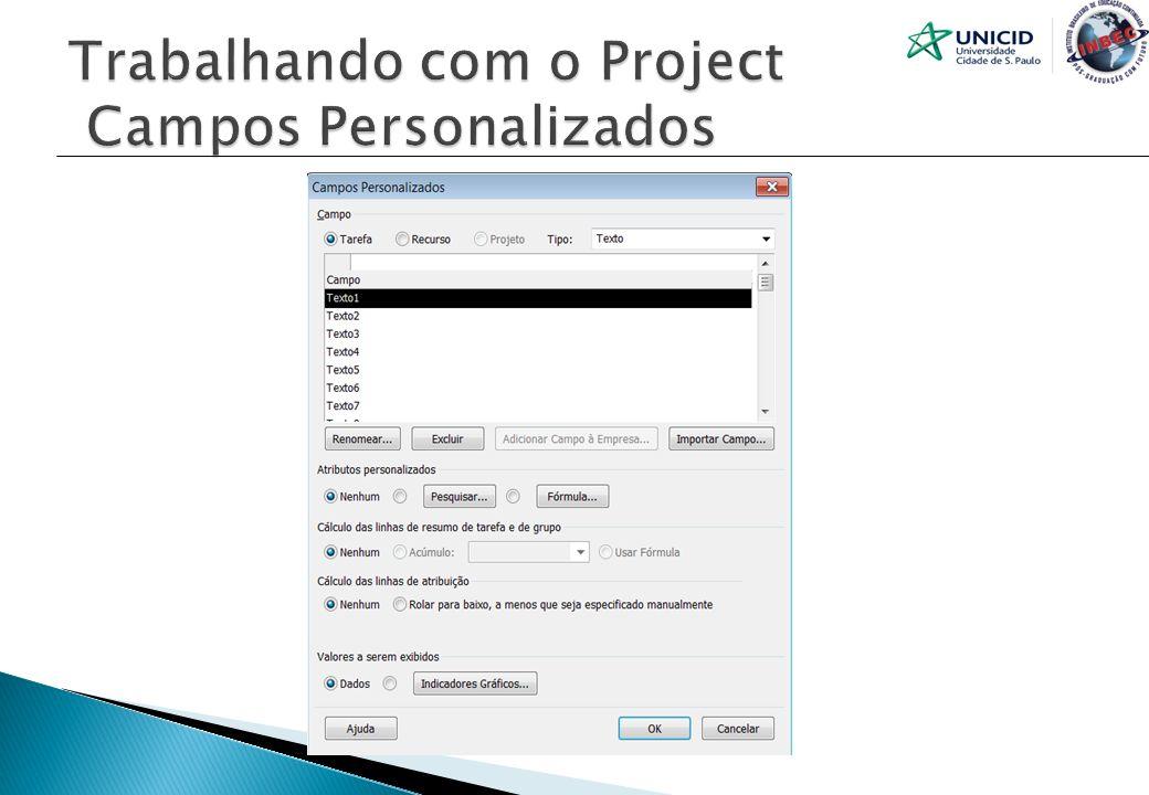 Trabalhando com o Project Campos Personalizados