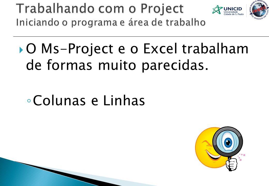 Trabalhando com o Project Iniciando o programa e área de trabalho