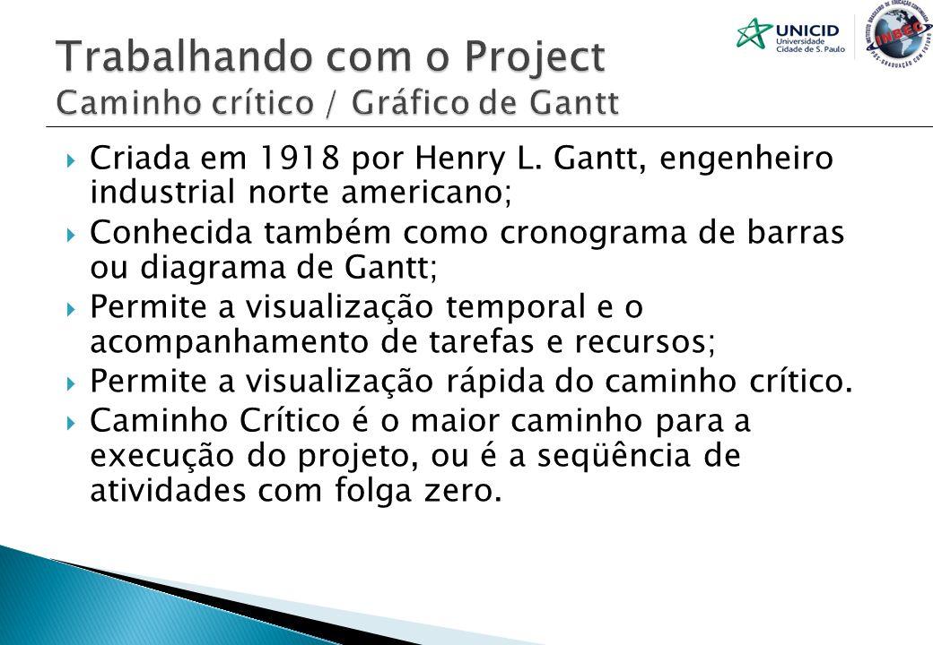 Trabalhando com o Project Caminho crítico / Gráfico de Gantt