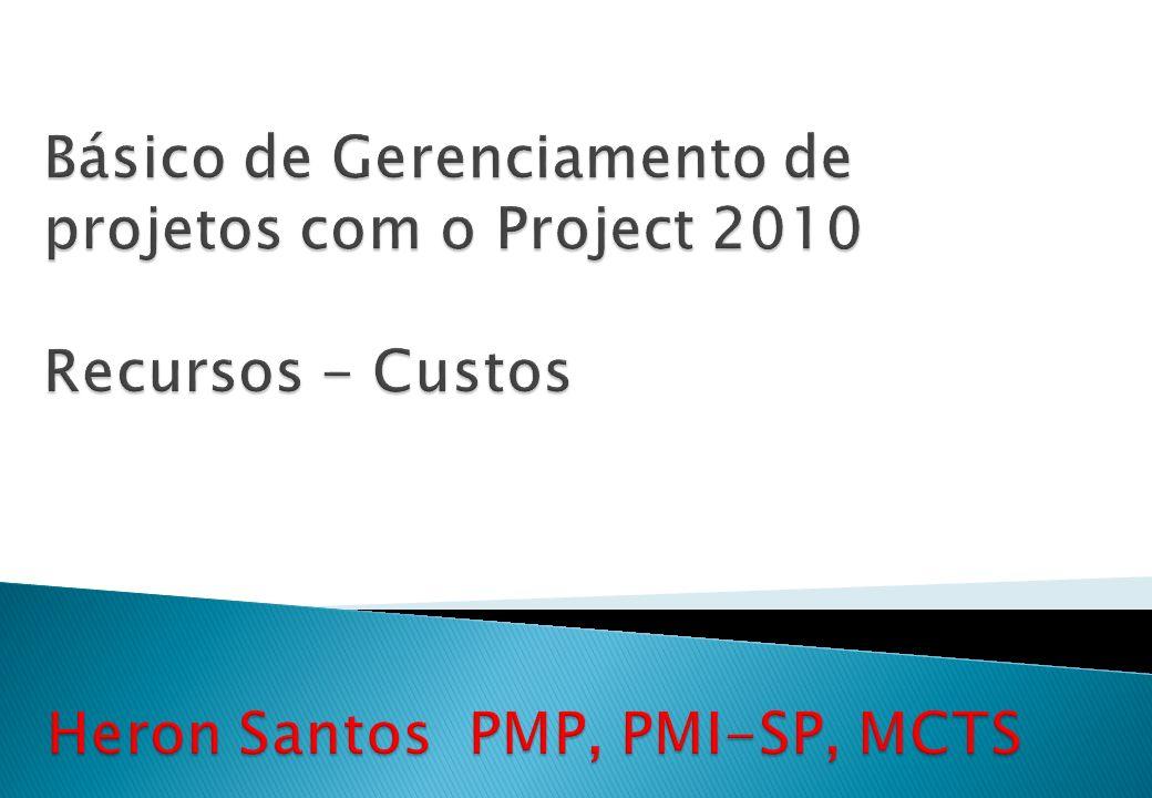 Básico de Gerenciamento de projetos com o Project 2010 Recursos - Custos