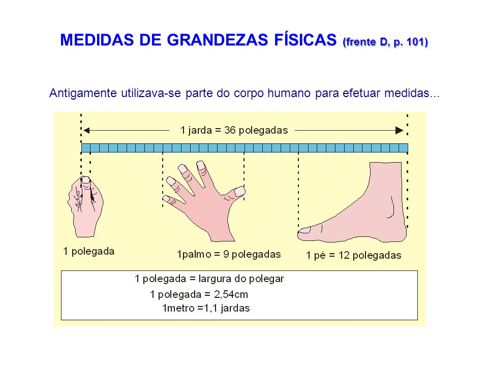 MEDIDAS DE GRANDEZAS FÍSICAS (frente D, p. 101)