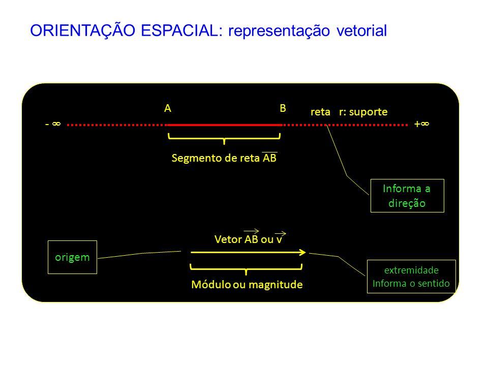 ORIENTAÇÃO ESPACIAL: representação vetorial