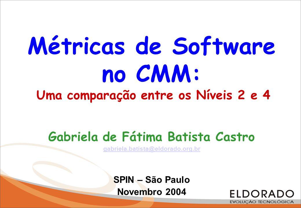 Métricas de Software no CMM: Uma comparação entre os Níveis 2 e 4
