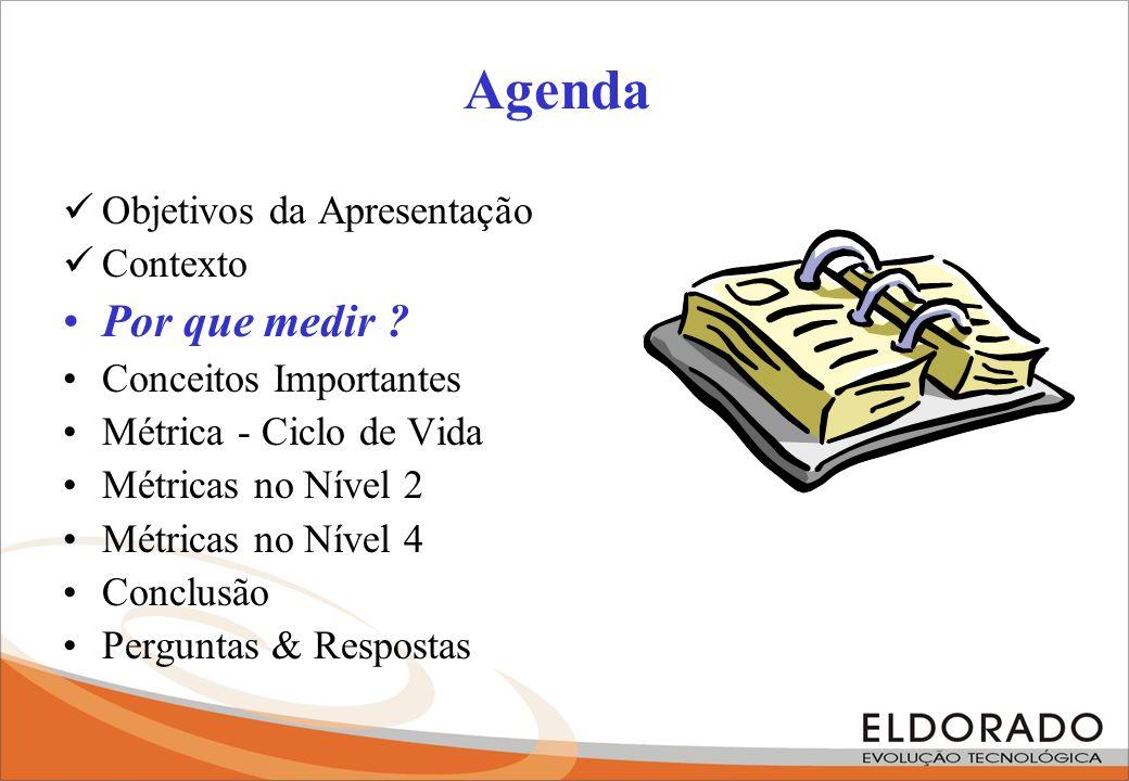 Agenda Por que medir Objetivos da Apresentação Contexto