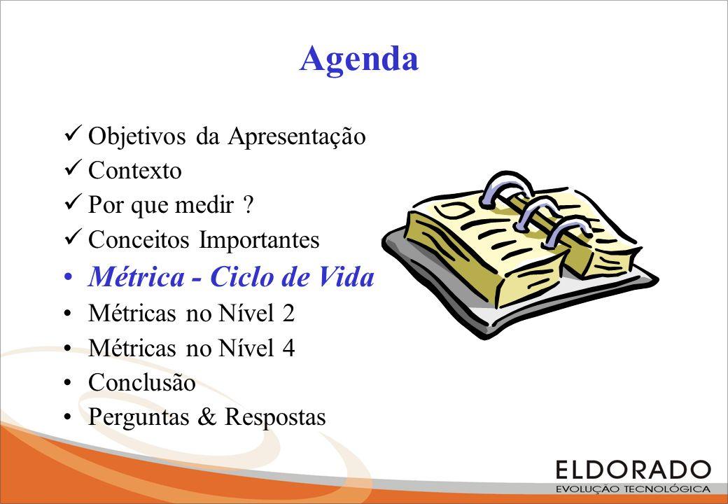 Agenda Métrica - Ciclo de Vida Objetivos da Apresentação Contexto