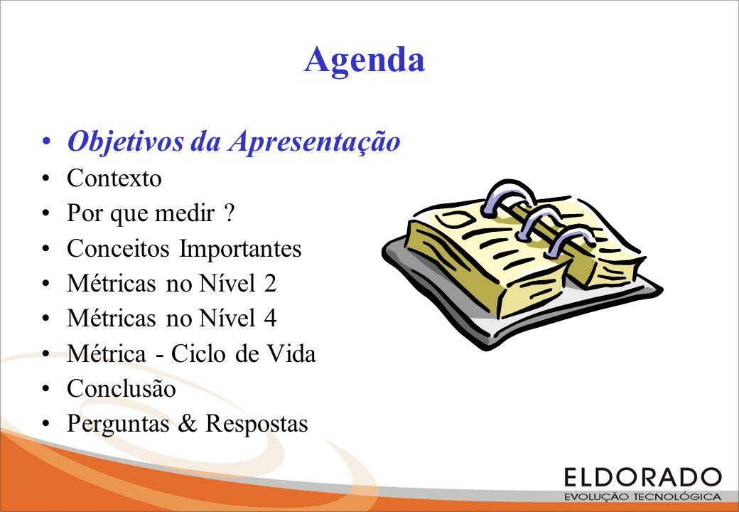 Agenda Objetivos da Apresentação Contexto Por que medir