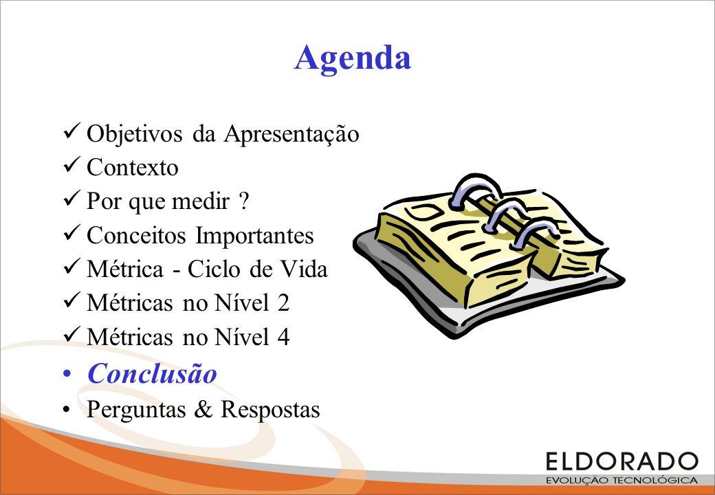 Agenda Conclusão Objetivos da Apresentação Contexto Por que medir