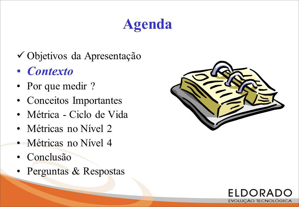 Agenda Contexto Objetivos da Apresentação Por que medir