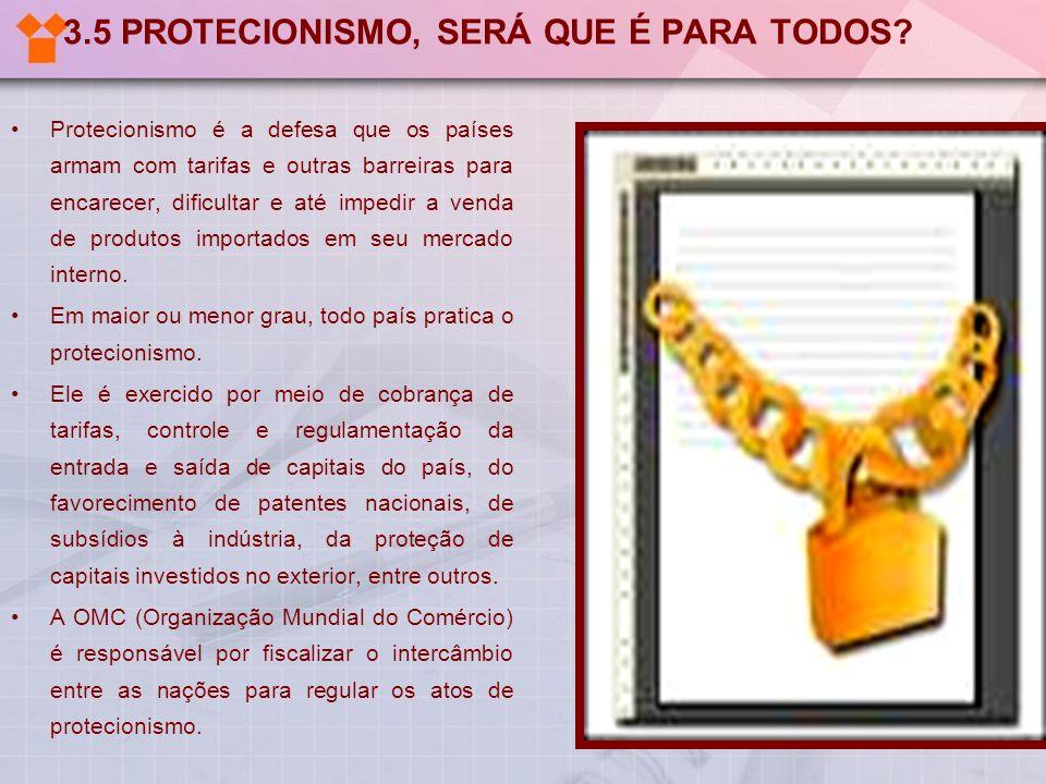 3.5 PROTECIONISMO, SERÁ QUE É PARA TODOS