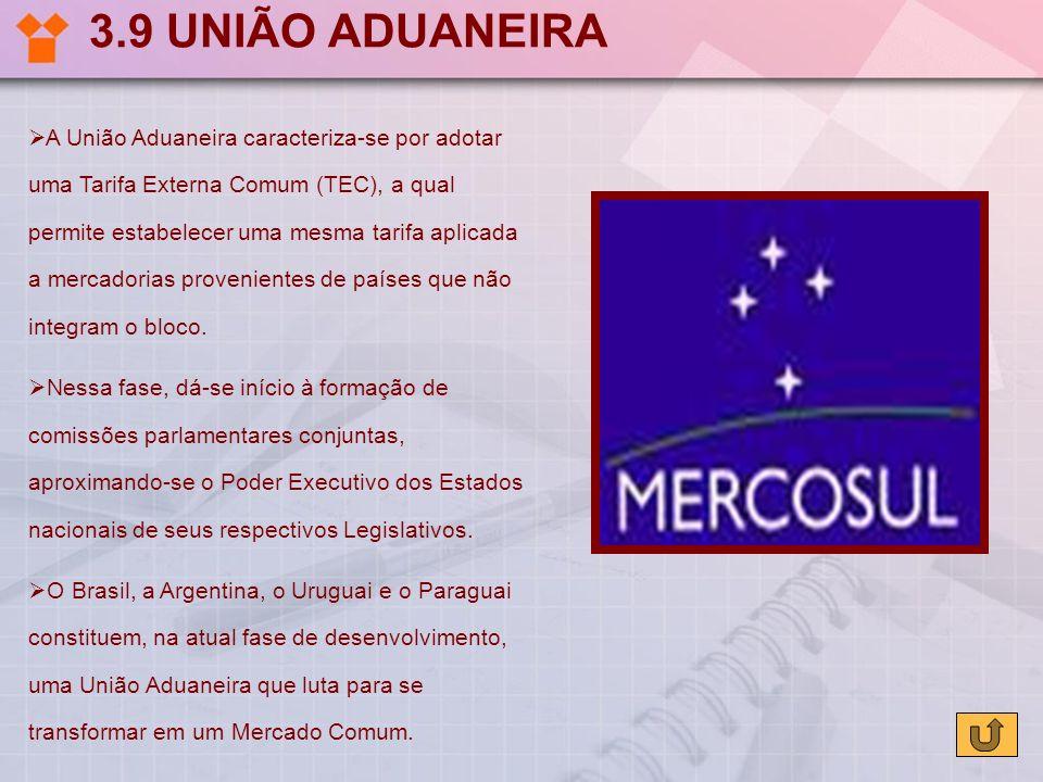 3.9 UNIÃO ADUANEIRA