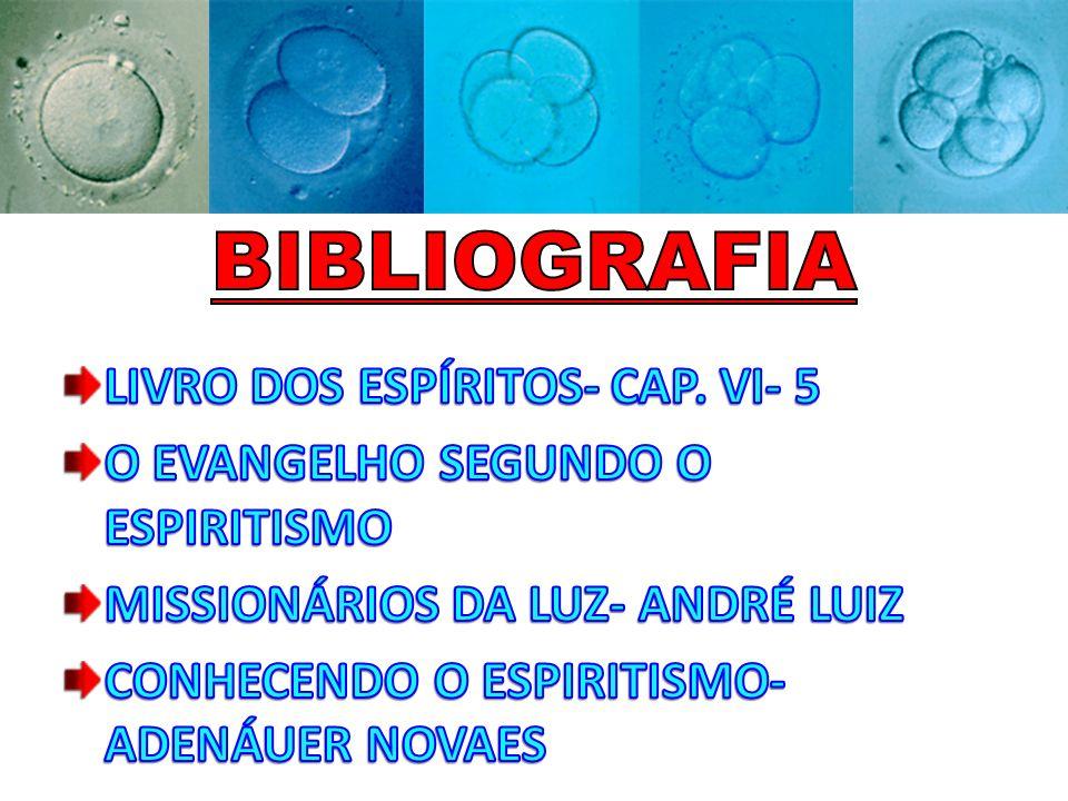 BIBLIOGRAFIA LIVRO DOS ESPÍRITOS- CAP. VI- 5