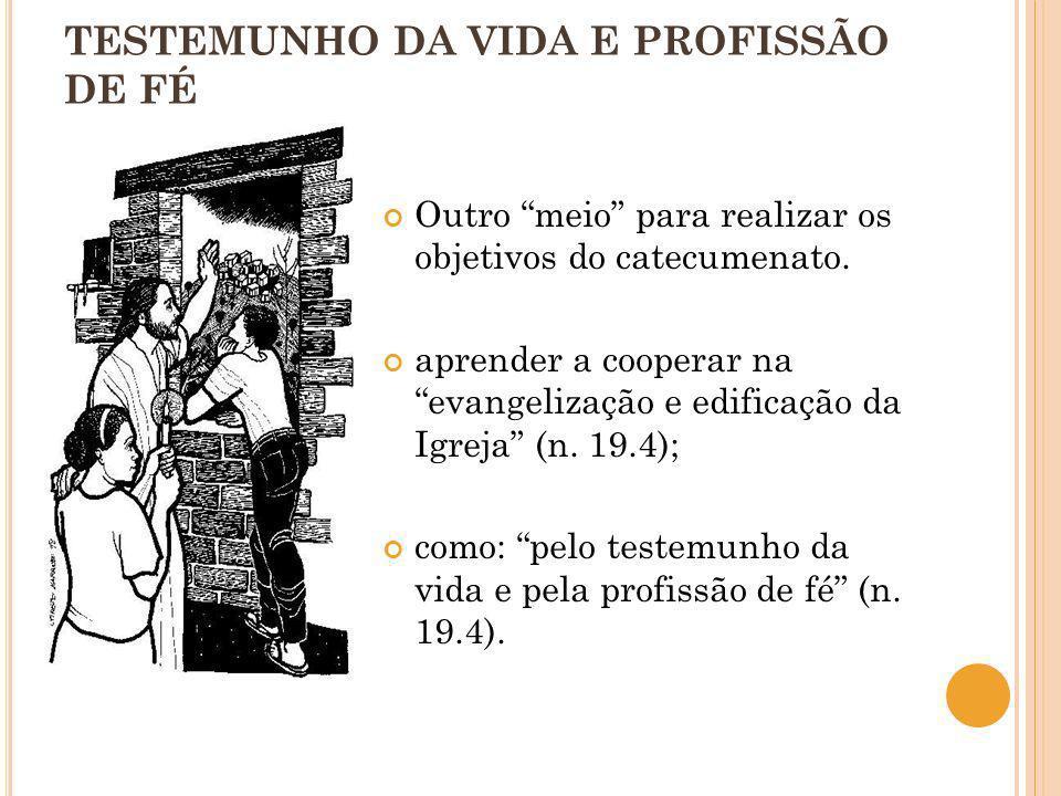 TESTEMUNHO DA VIDA E PROFISSÃO DE FÉ